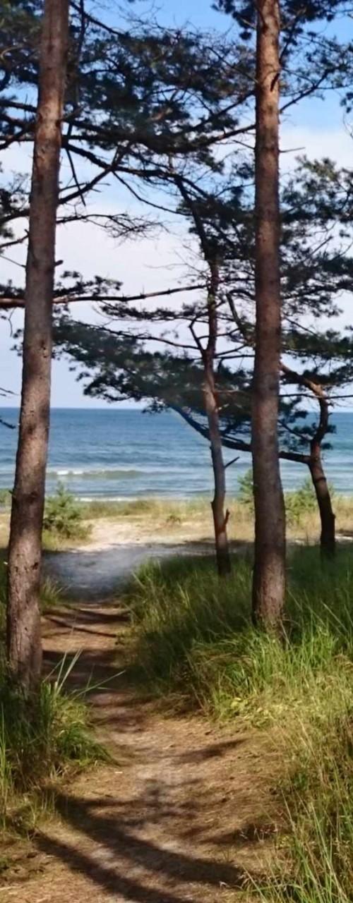 Privater Strandzugang